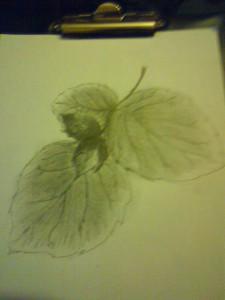 liście2